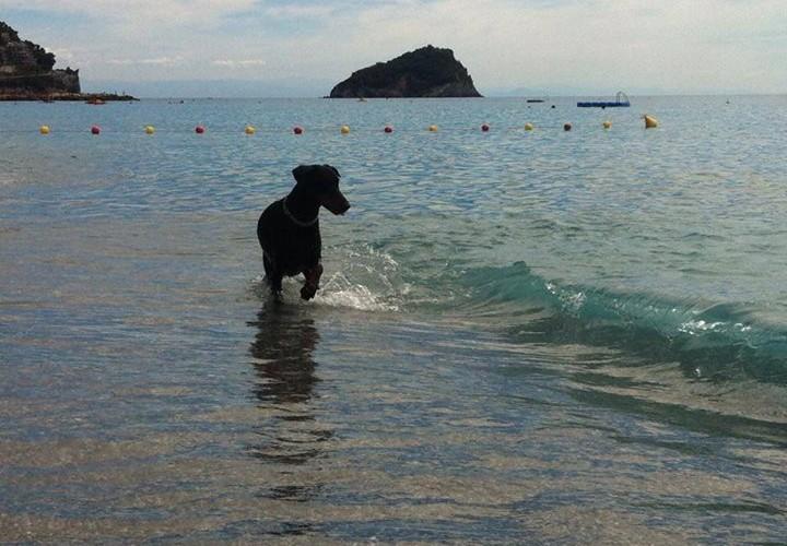 Pluto_Beach_Villa_Imperiale_2